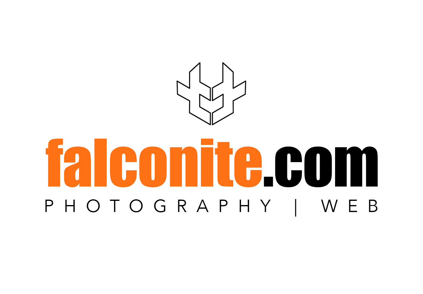 Falconite Logo